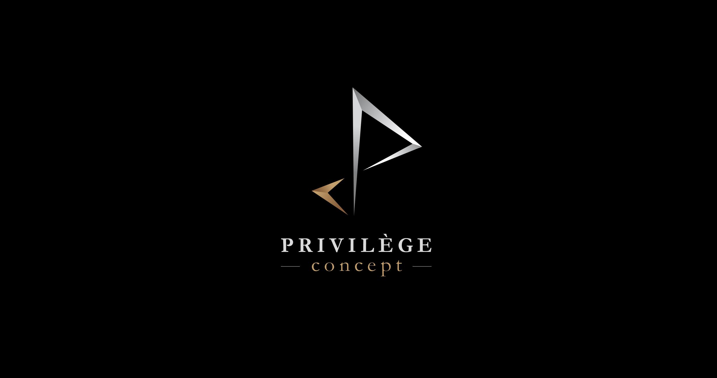 Création de logo privilège